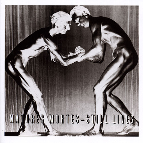 Natures Mortes - Still Lives by Various Artists