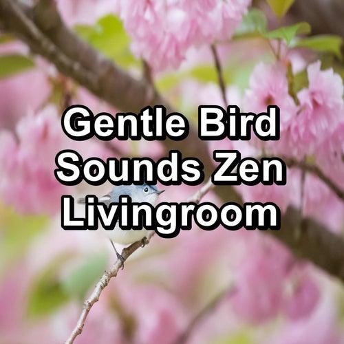 Gentle Bird Sounds Zen Livingroom by Spa Relax Music