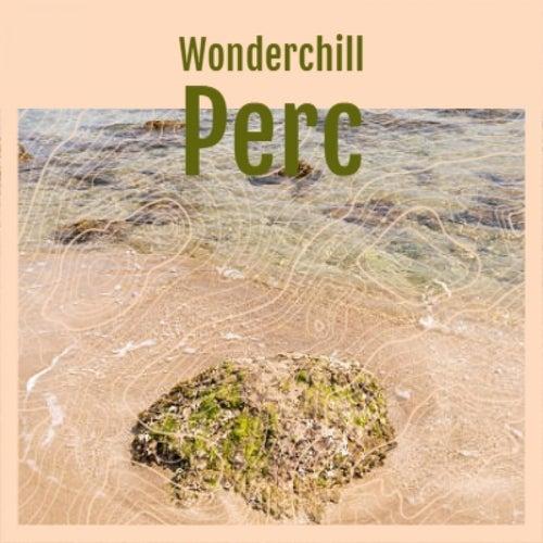 Wonderchill Perc by Various Artists