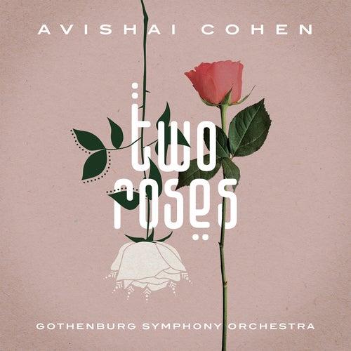 Two Roses von Avishai Cohen