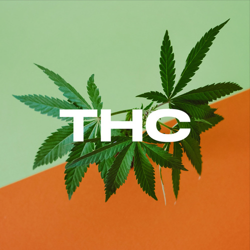 THC: The Hits Collection de Various Artists