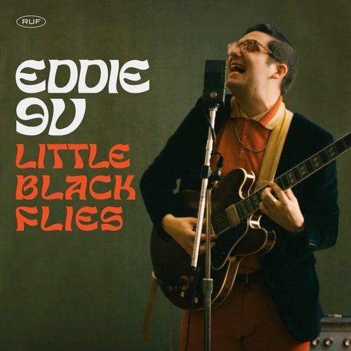 Little Black Flies by Eddie 9V