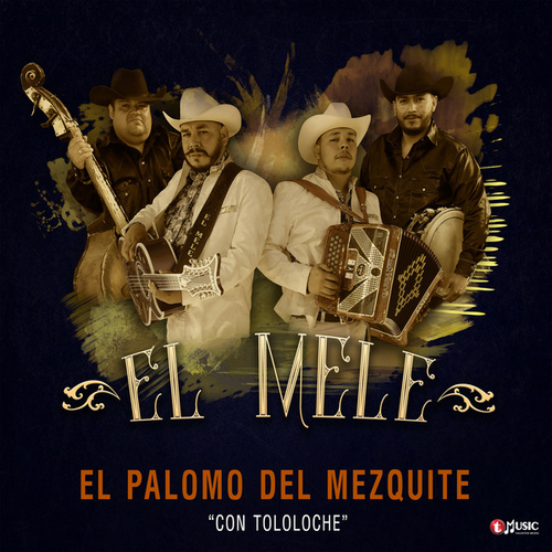 El Palomo del Mezquite by Melé