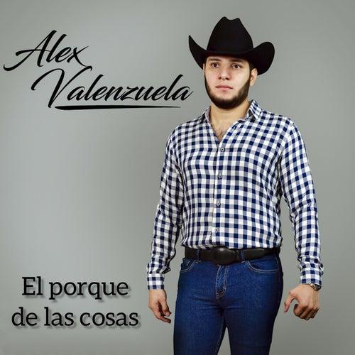 El porque de las cosas de Alex Valenzuela