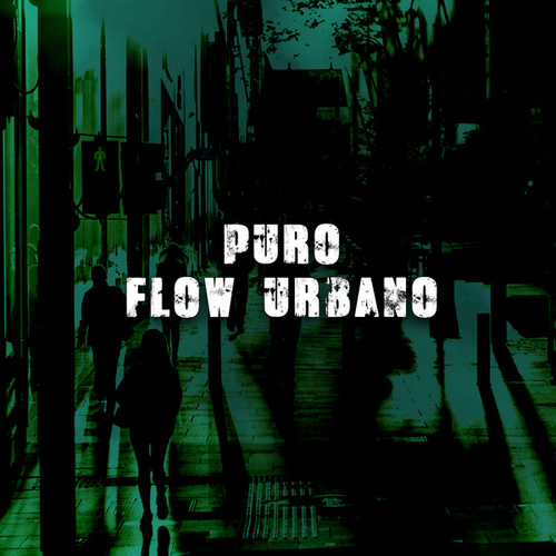 Puro Flow Urbano by Various Artists