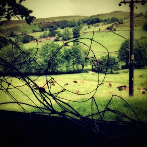 Rural Eerie by Flange Circus