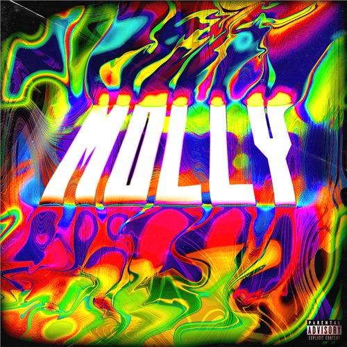 MOLLY (prod. by ROER) de A.Niks