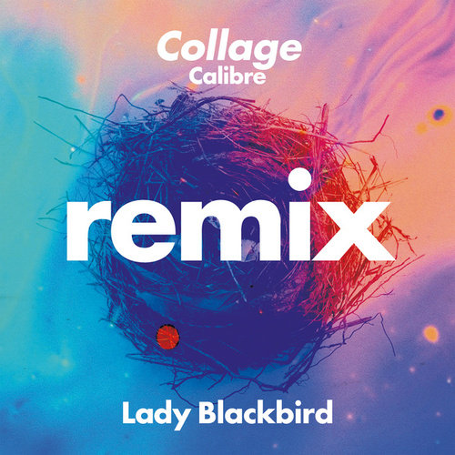 Collage (Calibre Remix) by Lady BLACK BIRD
