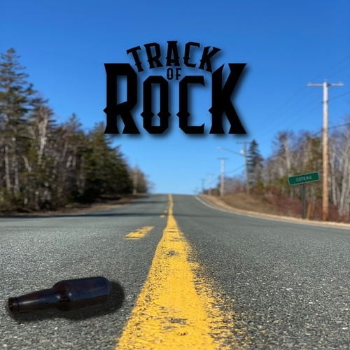 Bobby Ray (Radio Edit) by Track of Rock