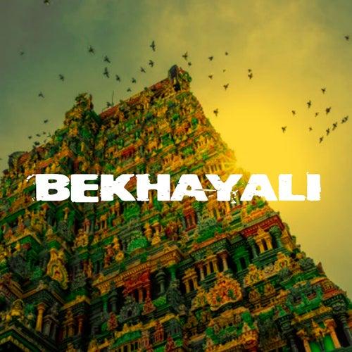 Bekhayali (Remix) von Hindi Song