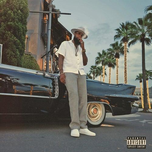 SDS Vibes by Slim Thug