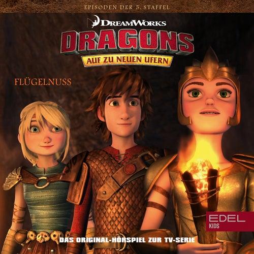 Folge 55: Flügelnuss / Das Buch der Rekorde (Das Original-Hörspiel zur TV-Serie) von Dragons - Auf zu neuen Ufern