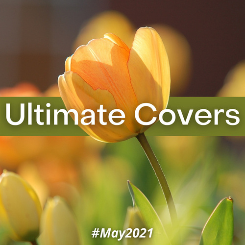 Ultimate Covers (#May 2021) by Sifare Cover Band