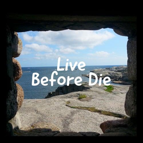 Live Before Die by Dutch error