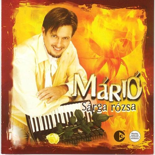 Sargarozsa by Mario