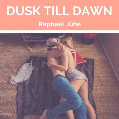 Dusk Till Dawn (Piano Version) von Raphael Jühe