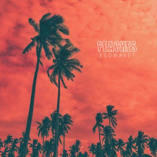 Peaches (Remix) de XsoWavey