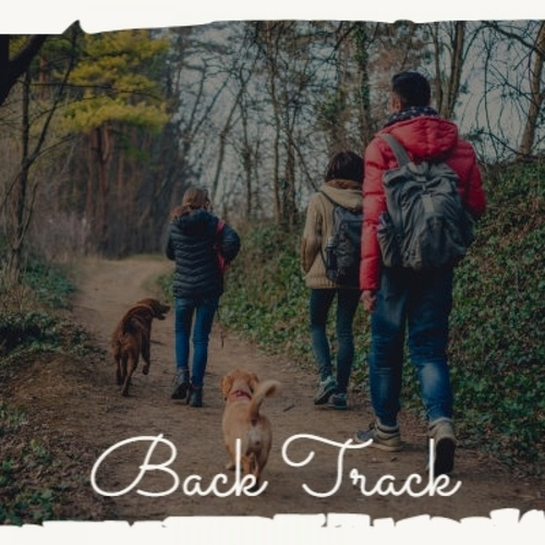 Back Track by Various Artists