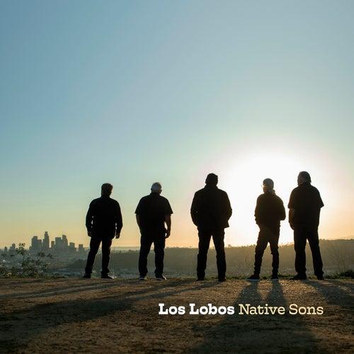 Misery by Los Lobos