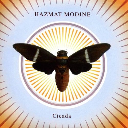 Cicada von Hazmat Modine