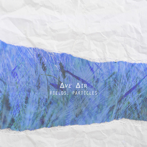 Fields, Particles by Ave Air