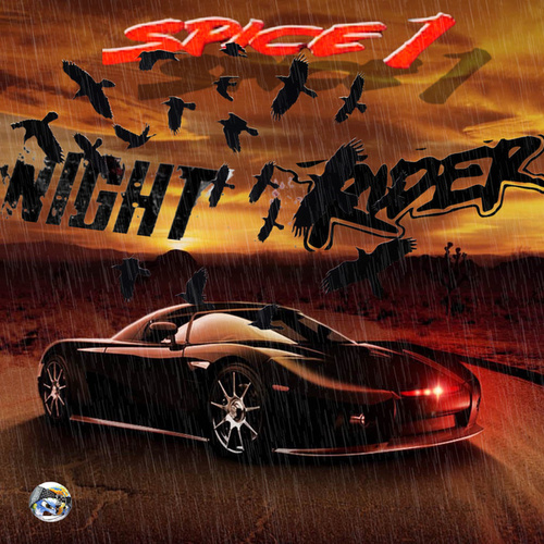 Night Rider von Spice 1
