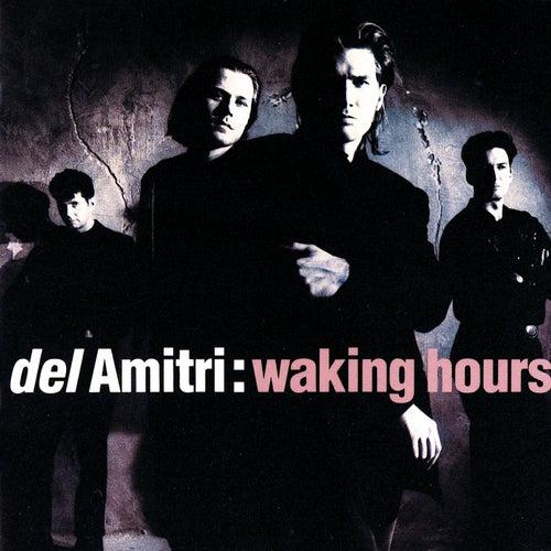 Waking Hours de Del Amitri