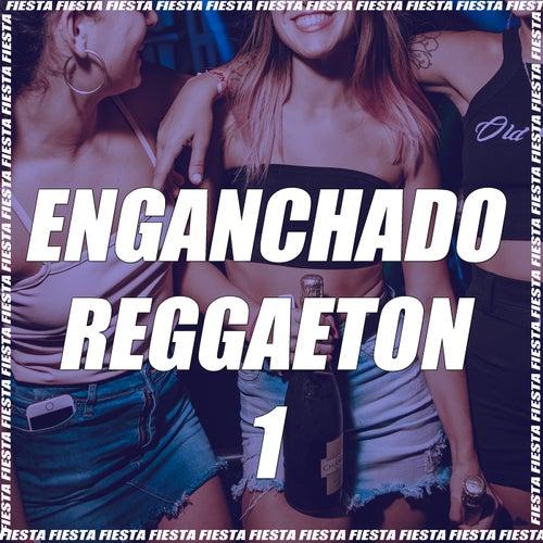 Enganchado Reggaeton #1 (Remix) van DJ Alex