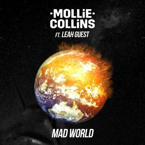 Mad World de Mollie Collins