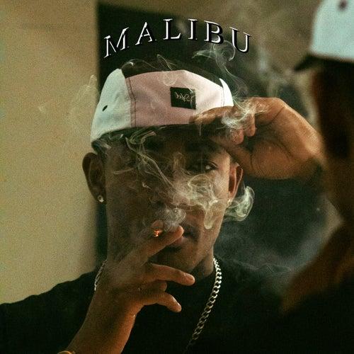 Malibu by Pantera