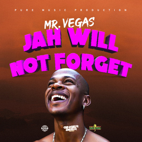 Jah Will Not Forget by Mr. Vegas