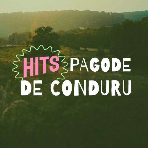 Hits Pagode de Conduru by Various Artists