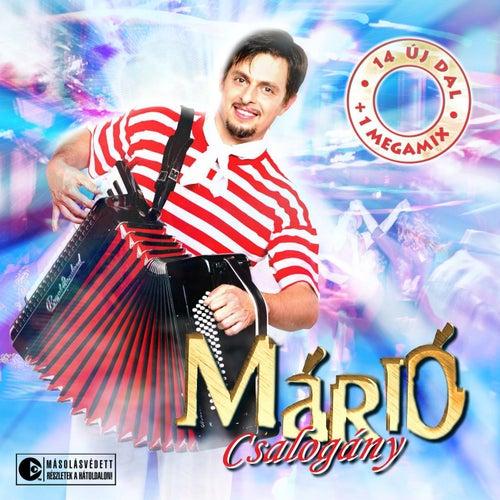 Csalogany by Mario