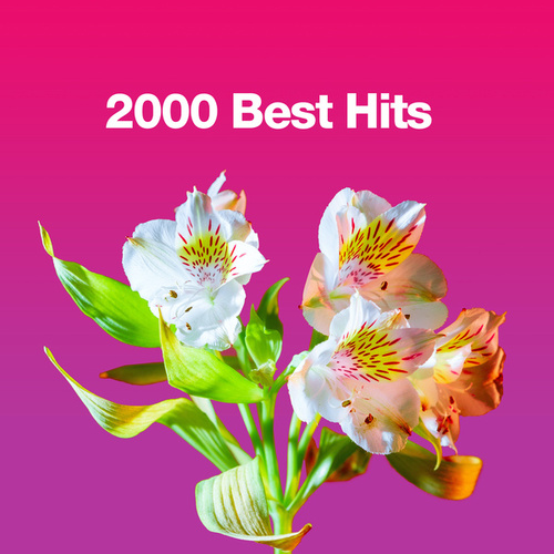 2000 Best Hits de Various Artists