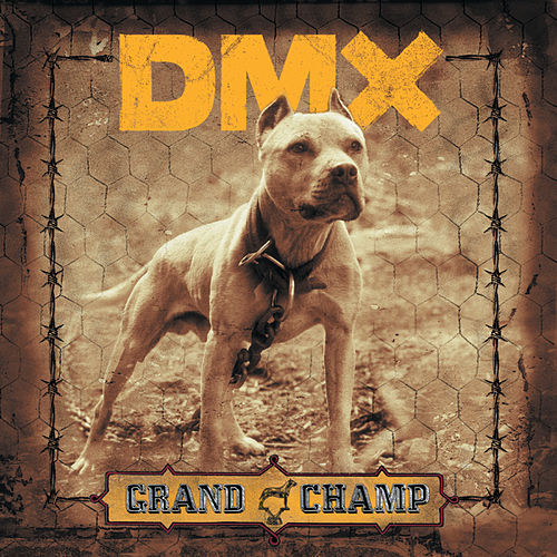 Grand Champ de DMX