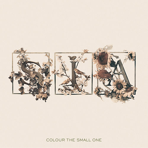 Colour The Small One de Sia