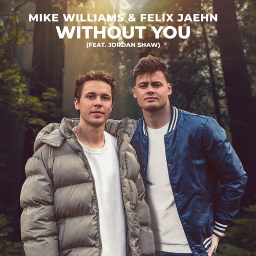 Without You von Mike Williams