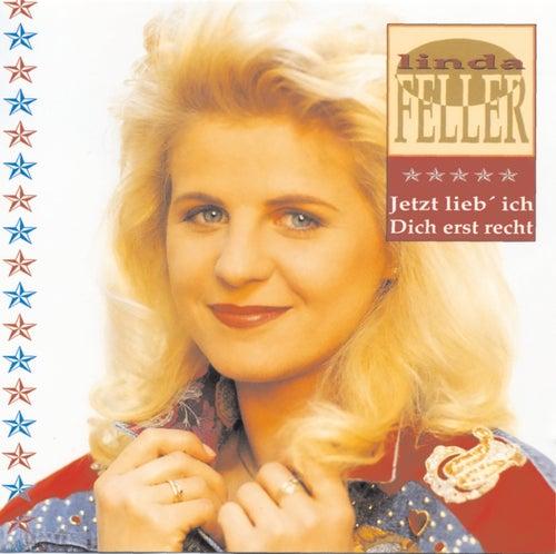 Jetzt lieb' ich Dich erst recht von Linda Feller