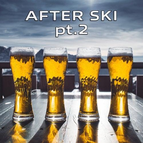 AFTER Ski Pt.2 von Various Artists