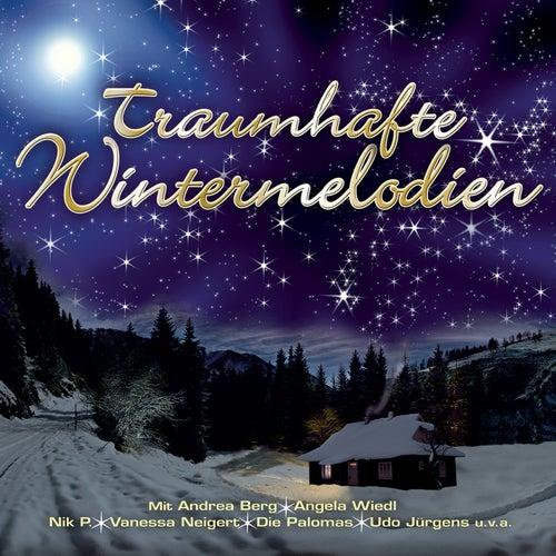 Traumhafte Wintermelodien von Various Artists
