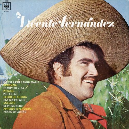 Vicente Fernández de Vicente Fernández
