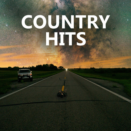 Country Hits de Various Artists