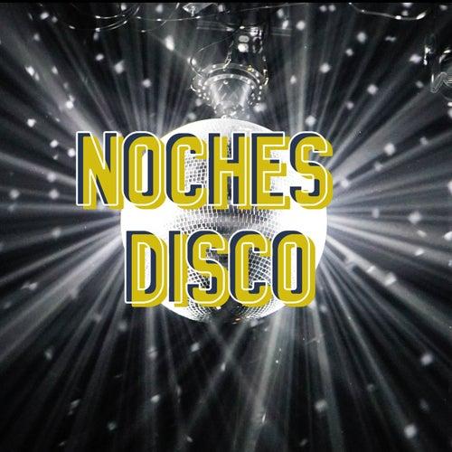 Noches Disco de Various Artists