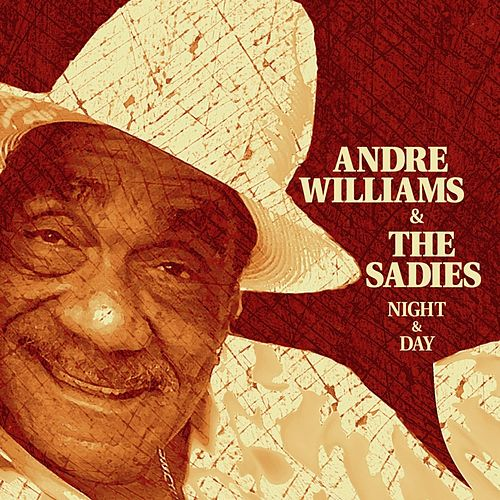 Night & Day by Andre Williams