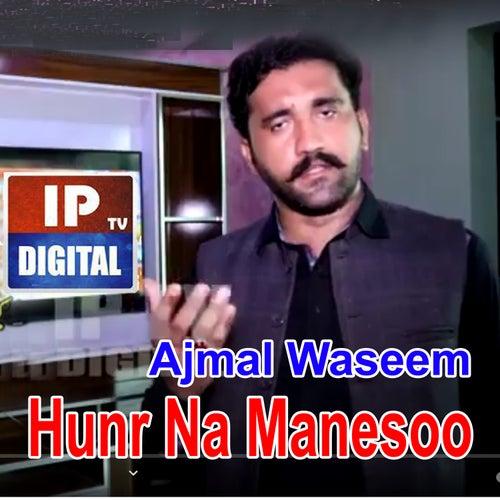 Hunr Na Manesoo by Ajmal Waseem