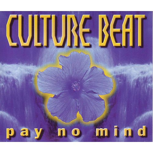 Pay No Mind de Culture Beat