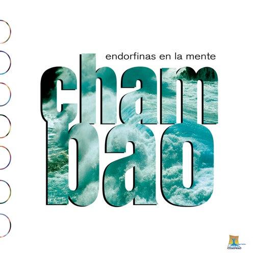 Endorfinas En La Mente de Chambao