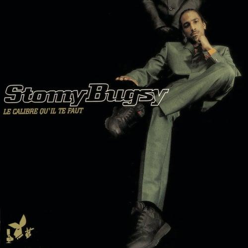Le calibre qu'il te faut de Stomy Bugsy