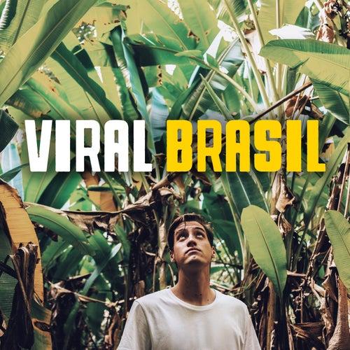 Viral Brasil de Various Artists
