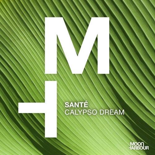 Calypso Dream by Santé